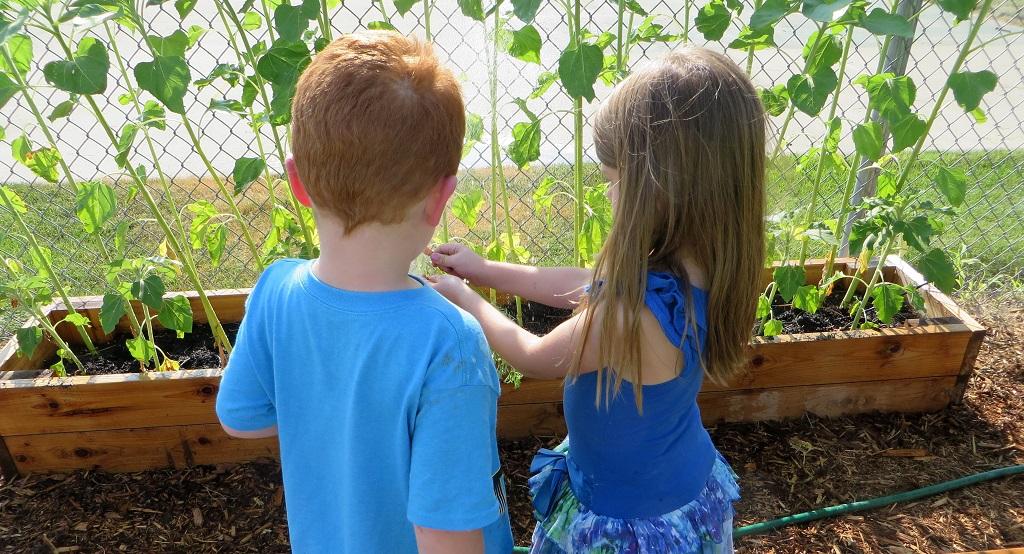 Children's Village Garden